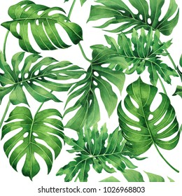 Watercolor painting tropical monstera,palm leaf,green leaves seamless pattern background.Watercolor hand drawn illustration tropical exotic leaf prints for wallpaper,textile Hawaii aloha jungle style