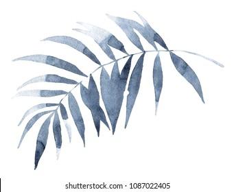 watercolor palm leaf shadow