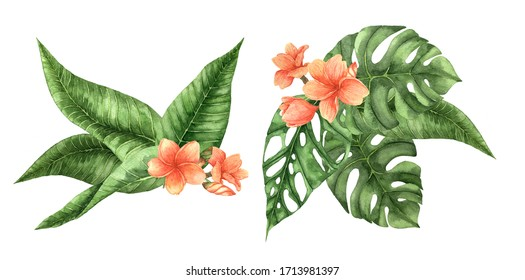 Watercolor palm leaf and tropical flowers set isolated on white background. Watercolor palm set. Botanical illustration set. Floral drawing. Use it for design, invitation, textile, website design.