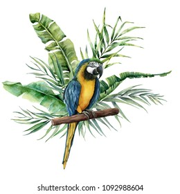 Watercolor parrot with tropical leaves. Hand painted parrot with monstera, banana and palm greenery branch isolated on white background. Nature illustration with bird. For design, print or background