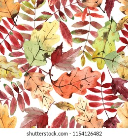 Watercolor pattern with bright autumn leaves isolated on white background.