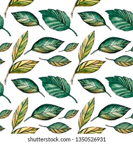 Watercolor pattern of bright green-yellow leaves drawn by hand is isolated on a white background
