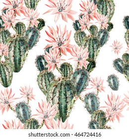 Watercolor pattern with cactus . Illustration