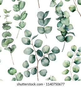 Watercolor pattern with eucalyptus round leaves. Hand painted baby and silver dollar eucalyptus branch isolated on white background. Floral illustration for design, print, fabric or background