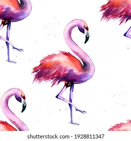 watercolor pattern with flamingos with splashes on a white background