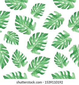 Watercolor pattern of green leaves of monstera. Great for wrapping paper, textiles, paper bags, digital wallpapers, backgrounds and other creative projects.