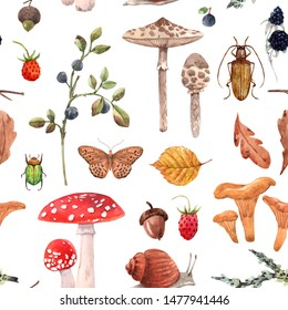 Watercolor pattern  of isolated illustrations, autumn collection, Mushrooms, berries, snail and butterfly, oak leaves and acorn