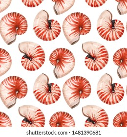Watercolor pattern of nautilus shells,  abstract sea wallpaper