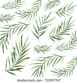 Watercolor pattern on a white background. Branches green forest plants. Forest grass.