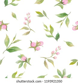 Watercolor pattern of pink buds with leaves