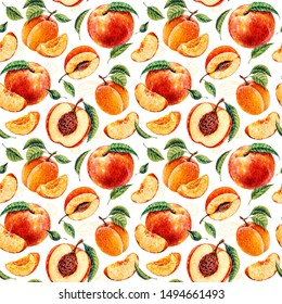 Watercolor peach and apricot. Botanical watercolor hand drawn illustration. Peach. Apricot. Watercolor fruits. Seamless pattern