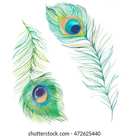 Watercolor peacock feathers. Hand drawn exotic bird feather set isolated on white background. Vintage decorative elements for retro design