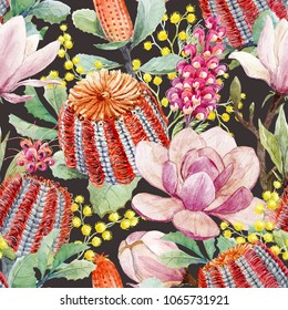 Watercolor pettern  tropical Australian plants Banksia,  yellow flowers of mimosa, red flowers Grevillea,  flower tropical card, pink magnolia