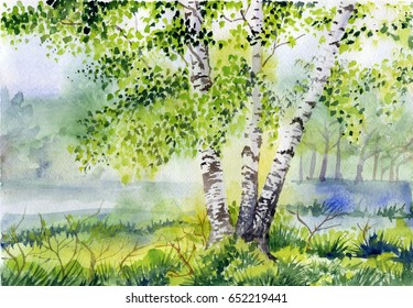 Watercolor picture of forest landscape with birch