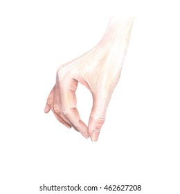 Watercolor pinching hand, isolated on white background. Postcard, poster & textile design. Hand drawn realistic illustration.