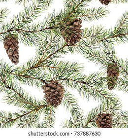 Watercolor pine tree seamless pattern. Hand painted fir branch with pine cone isolated on white background. Botanical illustration for design. Nature print.