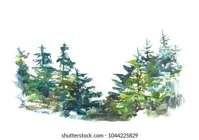 Watercolor pine trees background. Pine tree forest isolated on white. Watercolor trees. Watercolor forest.