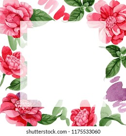 Watercolor pink camellia climbing flower. Floral botanical flower. Frame border ornament square. Aquarelle wildflower for background, texture, wrapper pattern, frame or border.