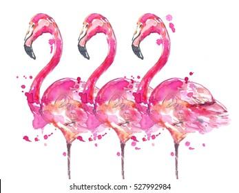 Watercolor pink flamingos.