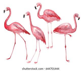 Watercolor pink flamingos set