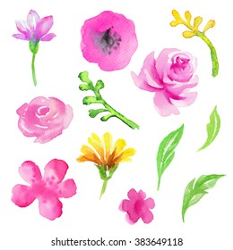 watercolor pink flowers and green leaves isolated design elements