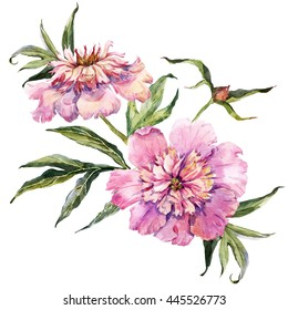 watercolor with pink peony flowers, retro card, a bouquet of flowers