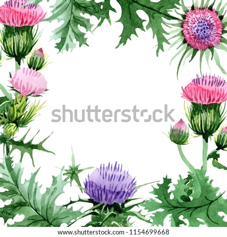 e7ace9d0c Watercolor pink and purple thistle wildflower. Floral botanical flower.  Frame border ornament square.