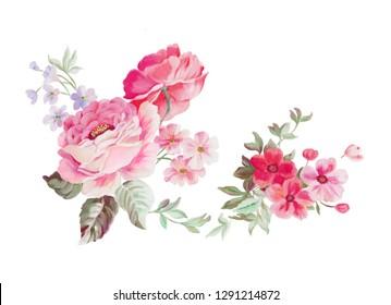 Watercolor pink rose small broken flowers