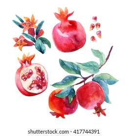 Watercolor pomegranate bloom branches and fruit set. Pomegranate fruit, berries and flower isolated on white background. Hand painted illustration