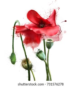 Poppy leaf images stock photos vectors shutterstock watercolor poppy elements with streaks and splashes of paint hand painted floral illustration with mightylinksfo