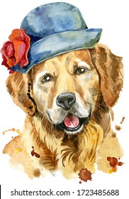 Watercolor portrait of golden retriever in a gray hat with a red flower