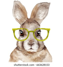 Watercolor portrait of rabbit. Hand drawn illustration. Funny hare with glasses.