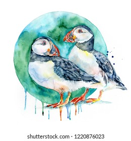 Watercolor portraite of two Puffins isolated on white