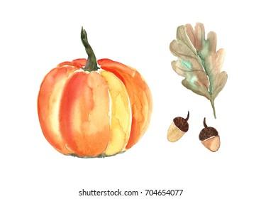 Watercolor  pumpkin with oakl leaf.