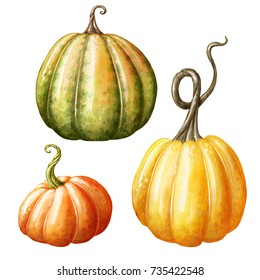 watercolor pumpkins, Halloween illustration set, harvest, Thanksgiving autumn design elements, fall, holiday clip art isolated on white background