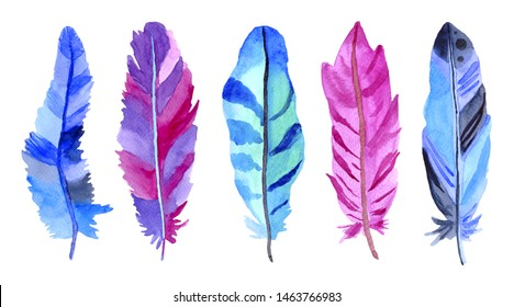 Watercolor purple, blue, green feathers set  isolated on white background. Hand painted illustration.