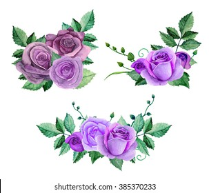 Watercolor purple roses bouquets. Flowers clip art. Floral hand painted
