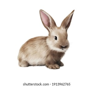 Watercolor Rabbit isolated on a white background. Watercolor botanical hand drawn illustration. Watercolor animal. Cute fluffy Bunny