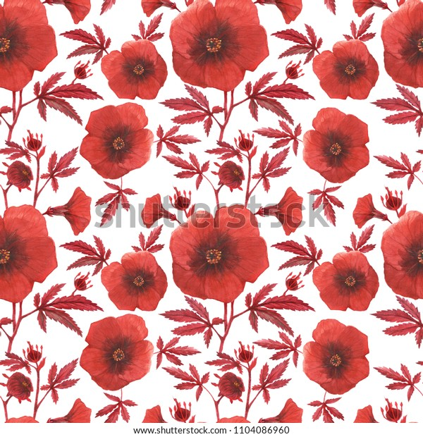 Watercolor Red hibiscus acetosella white pattern. Flowers and buds on a branch.