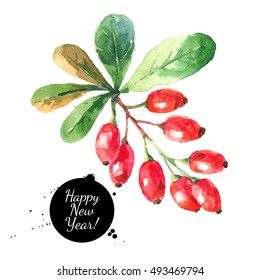Watercolor ripe barberries. Hand painted sketch winter Merry Christmas and Happy New Year isolated illustration