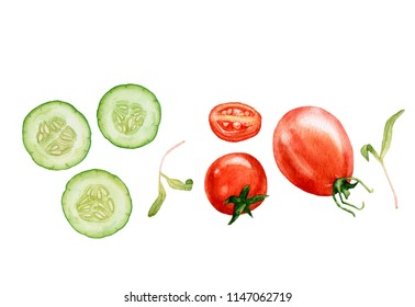 Watercolor ripe tomatoes, cut  tomatoes, cucumber slices, green  herbs isolated on white background.  Healthy, natural food. Fall harvest.