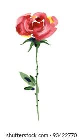 Watercolor -Rose-