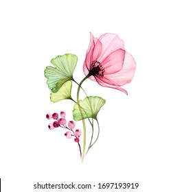 Watercolor Rose arrangement. Big pink flower with ginkgo leaves and berries isolated on white. Hand painted artwork with x-ray flower. Botanical illustration for cards, wedding design