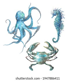 Watercolor sea animals set: crab, octopus and seahorse. Blue nautical creatures isolated on white background. Underwater clipart