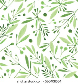 Watercolor seamless botanical pattern. Monochrome  flowers,leaves, herbs background. Hand painting. Green grass texture.