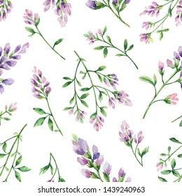 Watercolor seamless pattern with Alfalfa flowers and leaves isolated on white background. Illustration for wallpaper design, botanical drawing, textile, packaging and decorative print.