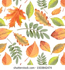 Watercolor seamless pattern with autumn leaves and branches isolated on white background. Hand painted illustration for design kitchen, menu, textiles, paper and other print and web projects.