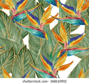 Watercolor seamless pattern with beautiful tropical plants - Bird of Paradise Flowers. Hand drawn watercolour flowers.