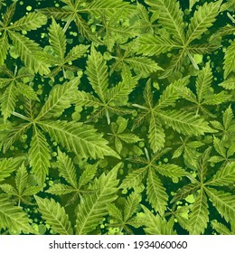 Watercolor seamless pattern cannabis leaves on a color background.