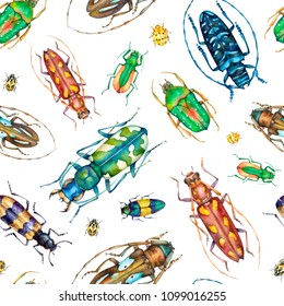 Watercolor seamless pattern with colorful beetles on white background bugs insect